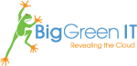 Big Green IT logo